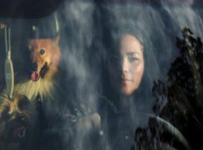 Migdalia Vasquez with her 4 dogs and two birds. She lives inside her car, a Kia Soul. Santa Rosa, CA. California Housing Crisis.