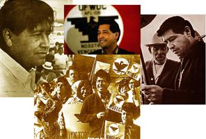 chavez_collage_sm